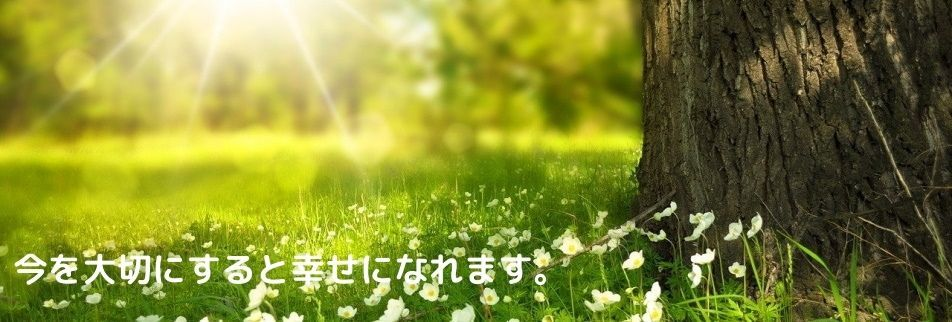 Mi−Well 〜ミイウェル〜
